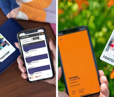 Article Pantone Color Match Card