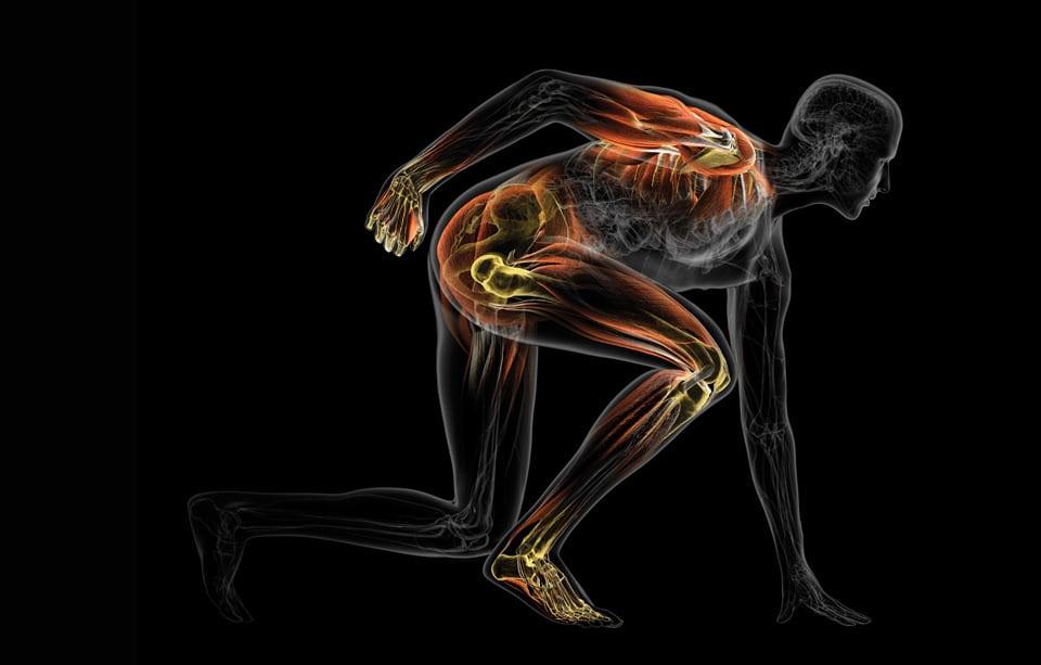 illustration medicale de Bryan Christie