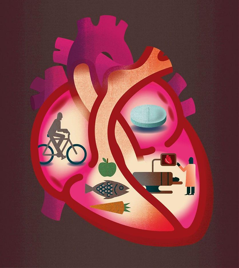 illustration d'un coeur par Andrew Baker