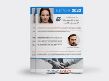 Imprimes Electoraux Propagande Electorale Elections