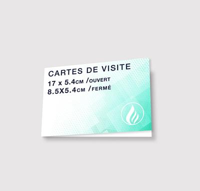 Carte De Visite Imprimer Cartes Pas Cher Rapide Livraison Gratuite